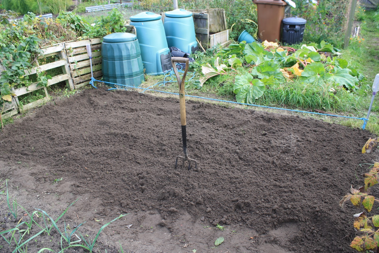 how to prepare my soil for a vegetable garden